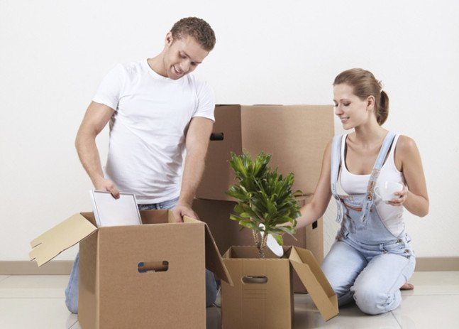 Pack plants or moving, moving company, U. Santini moving and storage