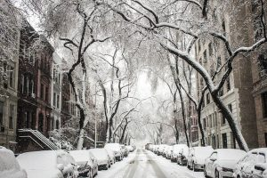 Moving to Fort Greene in 2020 - winter street