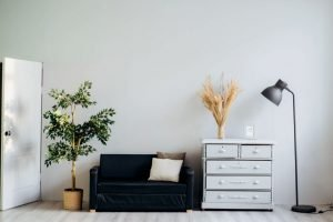sofa wardrobe plant and lamp