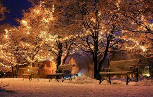 Outdoors - enjoy December in Brooklyn