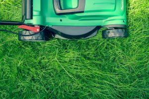 green lawn mower on grass - repair your lawn
