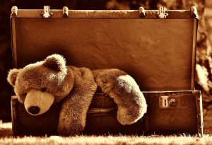 A brown teddy bear hanging out of an antiques suitcase.
