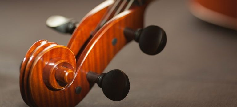 Head and neck of a violin.