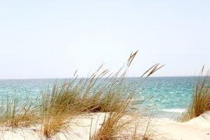 a sight of a beach