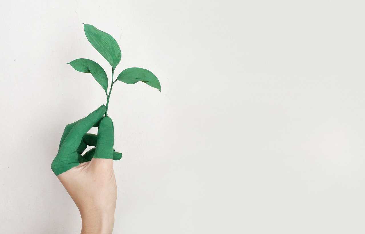 Green moving tips: Make an eco-friendly relocation