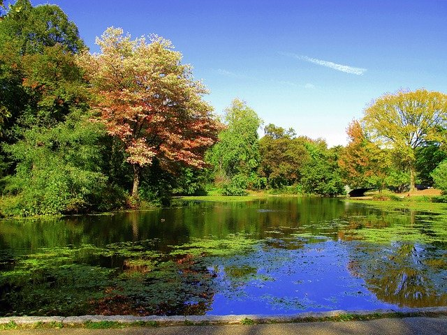 Prospect Park - another great place for family fun in Brooklyn